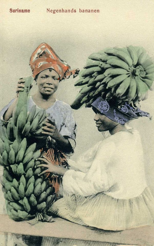 Bananas in Suriname (1902)