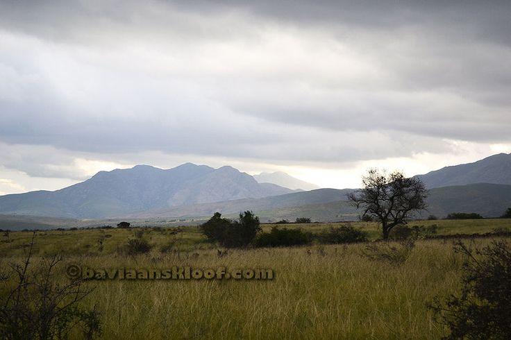 Photos of the remote wilderness, Baviaanskloof Eastern Cape South Africa www.baviaanskloof.com