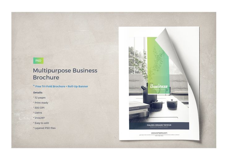 Interior Trifold Brochure by Creative Designer on @creativemarket - brochure template word