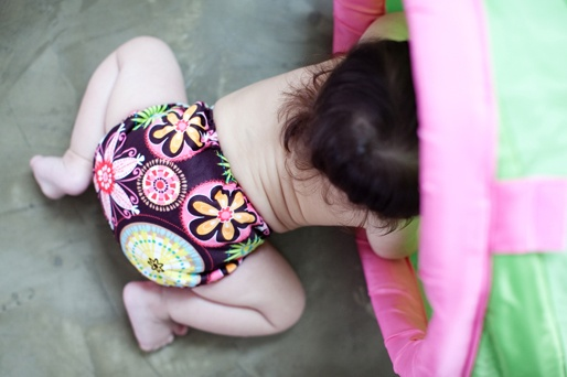 Basix Blueberry Diaper / Baby Bloom Print