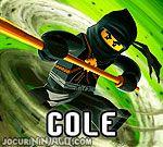Ninjago Cole