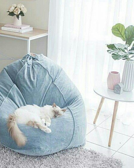 Hope everyone is snuggled up warm and cosy just like this beautiful kitty here on one of our Kip & Co Lead Grey Velvet Beanbags  This is a close-up of some amazing living room styling by the lovely Jen from @whitefoxstyling head over to her account to see the full pic plus lots more x