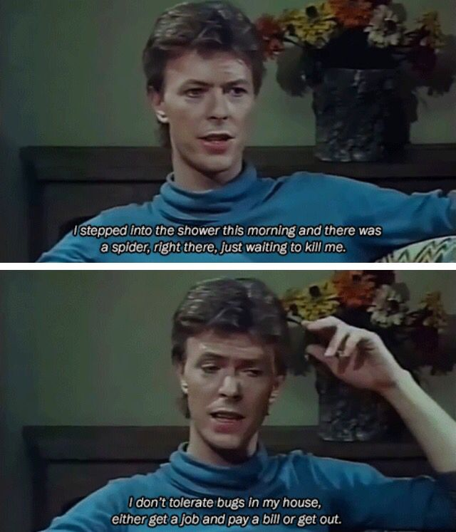 THANK YOU, David Bowie!