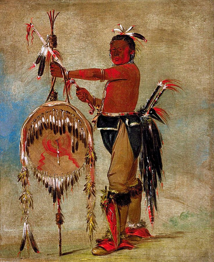 Native Pa Plants: 573 Best Images About George Catlin On Pinterest