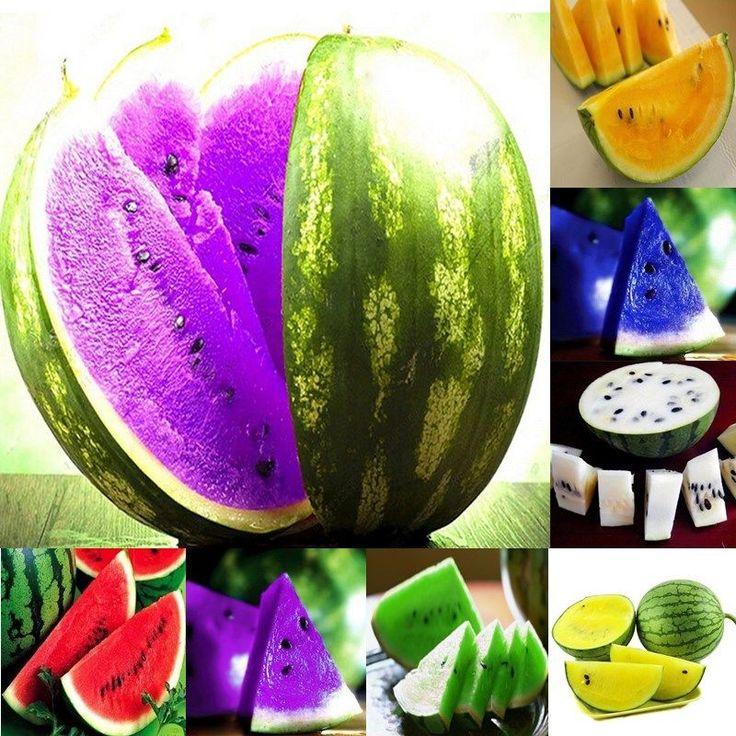 10x 7 Kinds Sweet Rare Watermelon Seeds Fruit Seed Green Orange Purple Yellow in Home & Garden, Yard, Garden & Outdoor Living, Plants, Seeds & Bulbs   eBay!