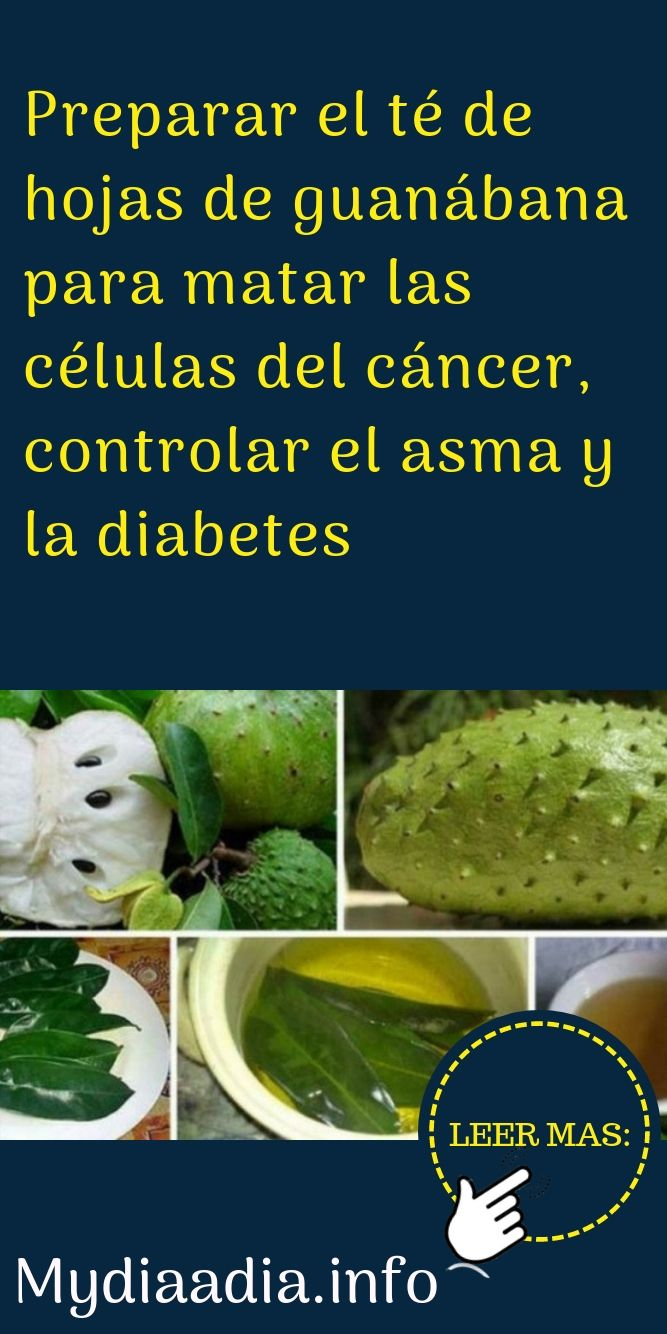 hojas de guanábana para diabetes