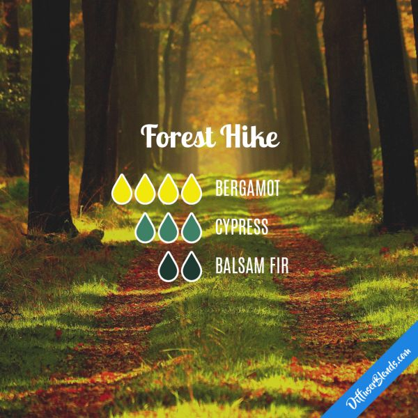 Forest Hike - Essential Oil Diffuser Blend