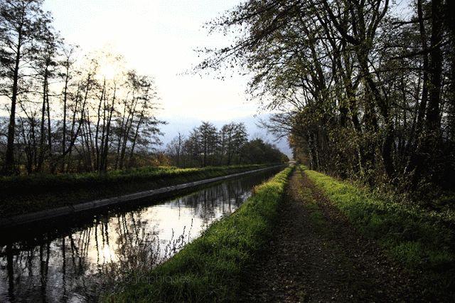 Mes Carnets Photographiques: Canal du Forez