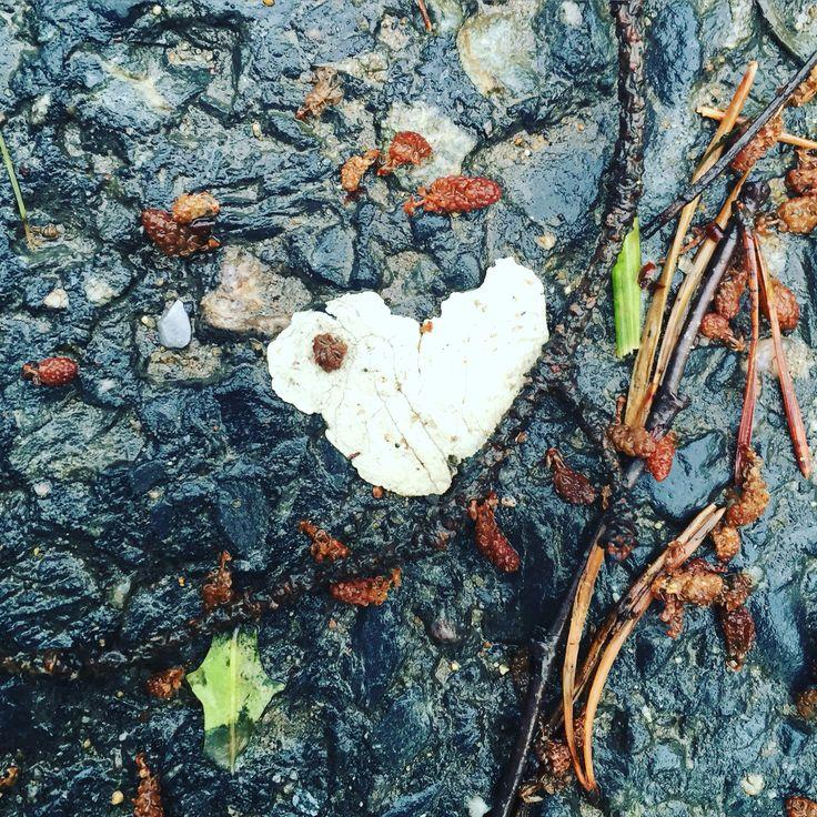 Bubblegum-heart