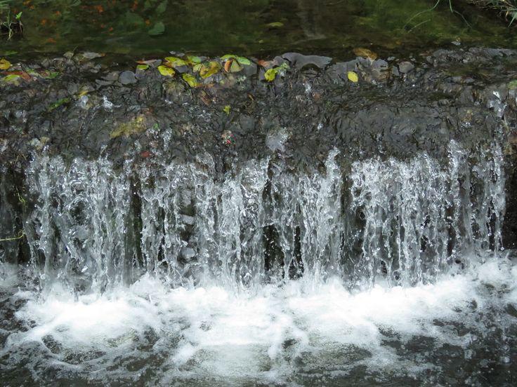 El agua: nuestra inspiración.