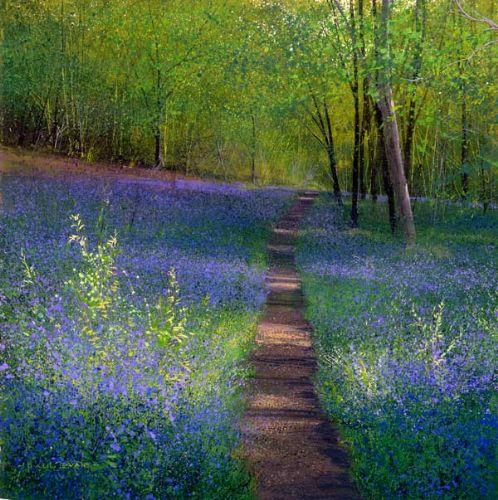 Bluebell Path - Paul Evans