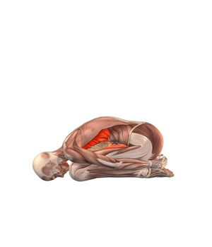 #BALASANA Yoga Exercises and Workouts: Child pose | YOGA.com