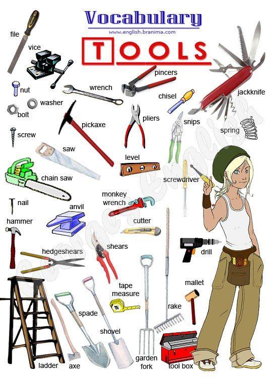 EFL practice - vocabulary - tools, musical instruments, sports, farm animals