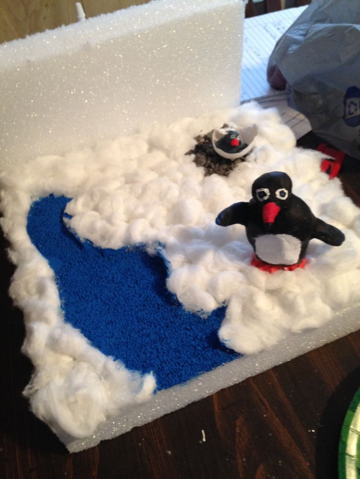 17 best images about science penguin diorama on pinterest