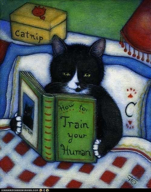 HOW TO TRAIN YOUR HUMAN. Reading Cat - Wow... Not that I'm surprised that cats can read... Just that they would need a book on this topic  :-)  ... ... © Heidi SHAULIS  (Artist, USA).