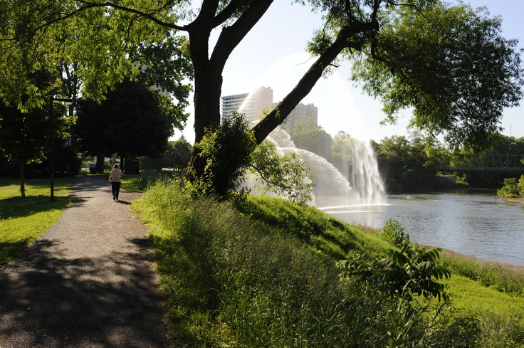 A soothing trail along the Thames River in London Ontario.