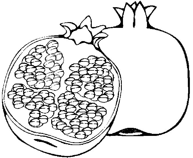 """pomegranate images coloring pages for kids 