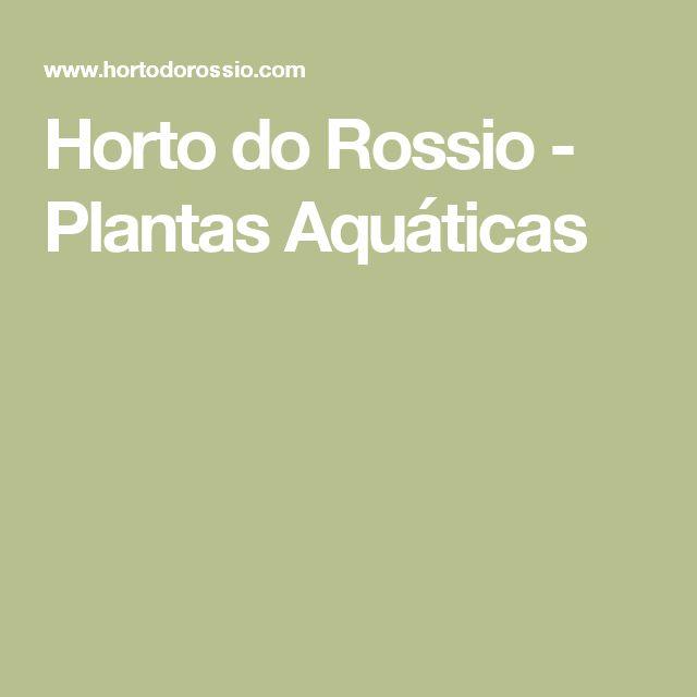 Horto do Rossio - Plantas Aquáticas