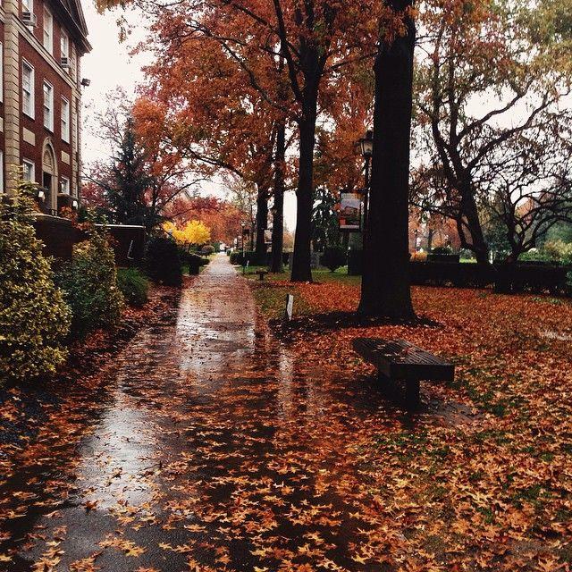 #autumn #rain #adelphiuniversity  Instagram credit: @kareniiehoavu