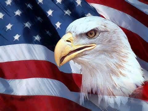 American Flag and an Eagle