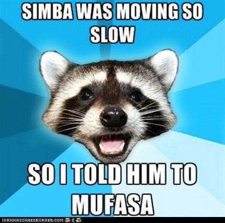 Animal Memes: Lame Pun Coon - The Laughin' KingKnockknock, Memes, Jokes, Funny Pictures, Lame Puns, Humor, Knock Knock, So Funny, Puns Coon