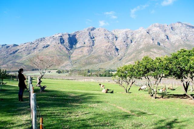 Rawsonville, South Africa