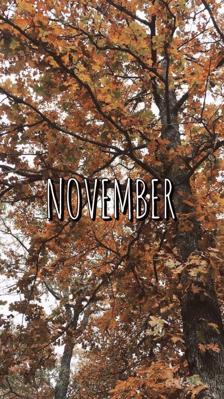 november wallpaper, november ThanksgivingWallpapertumblr