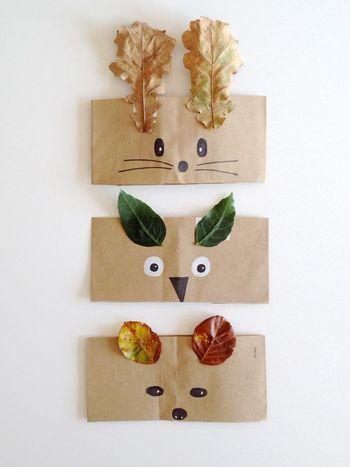 色や形の違う落ち葉は動物の耳に変身◎