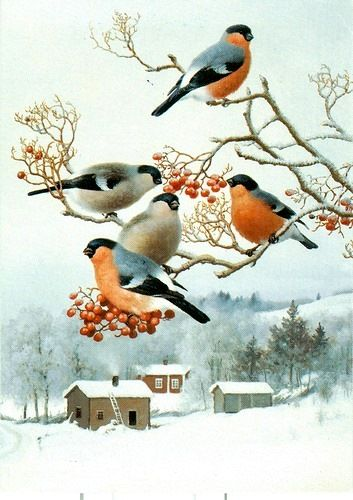 новогодняя история, имняя история, зимняя сказка, снегири
