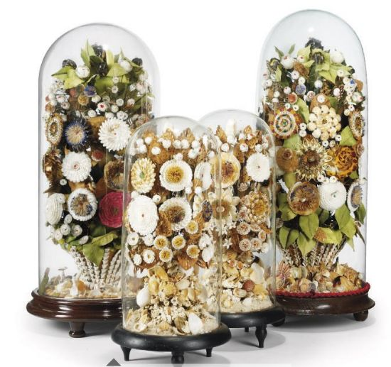 Victorian shell art under glass domes