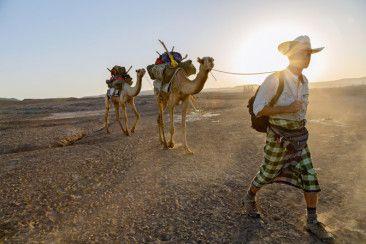Il giornalista Paul Solopek ha deciso di intraprendere un viaggio che lo porterà dalla Rift Valley (Etiopia) alla Terra del Fuoco (Cile). Il tutto rigorosamente a piedi!