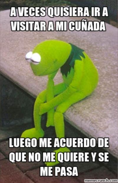 memes-de-cuñadas-aveces-quisiera-visitar-a-mi-cuñada.jpg (400×620)