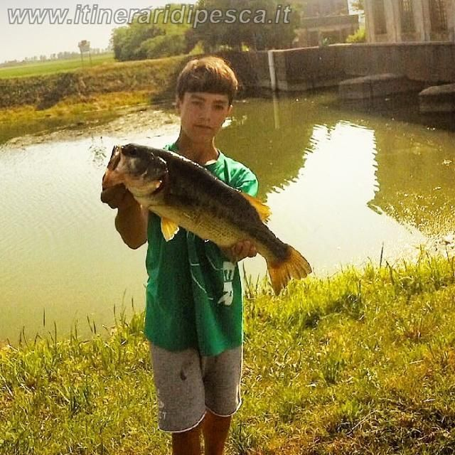 Canale Brian - Spinning al persico trota pesca fishing