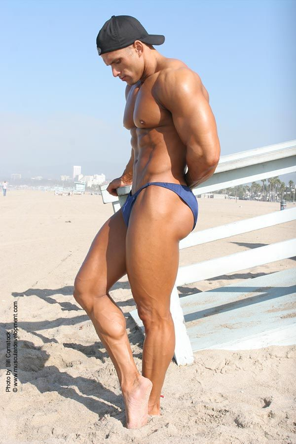 Willingly accept. Male bodybuilders bikinis are absolutely