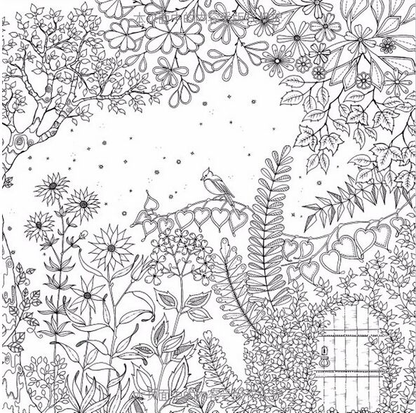 259 Best Images About Garden Coloring Pages On Pinterest
