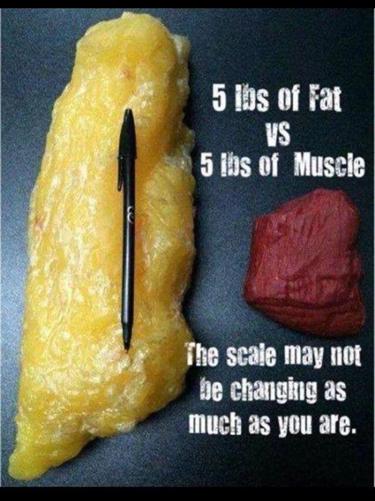Mens fitness diet plan pdf