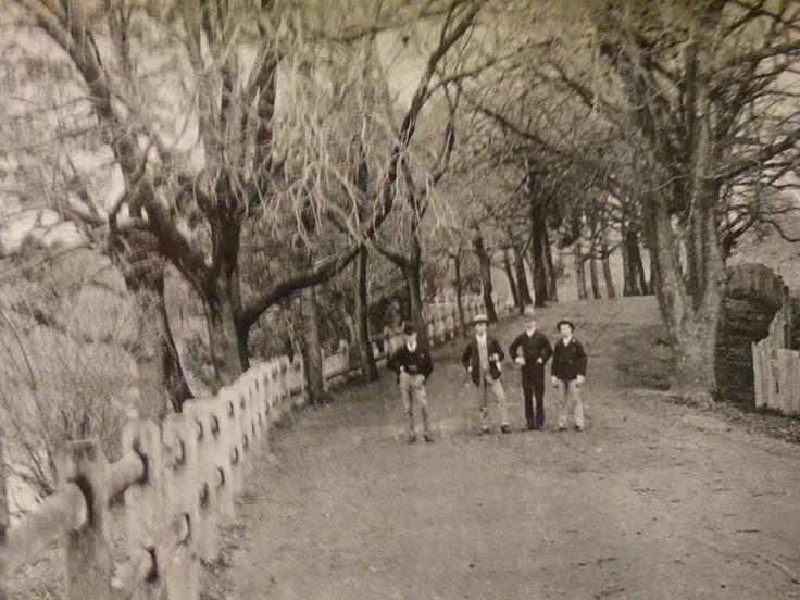 Parramatta Park 1892.