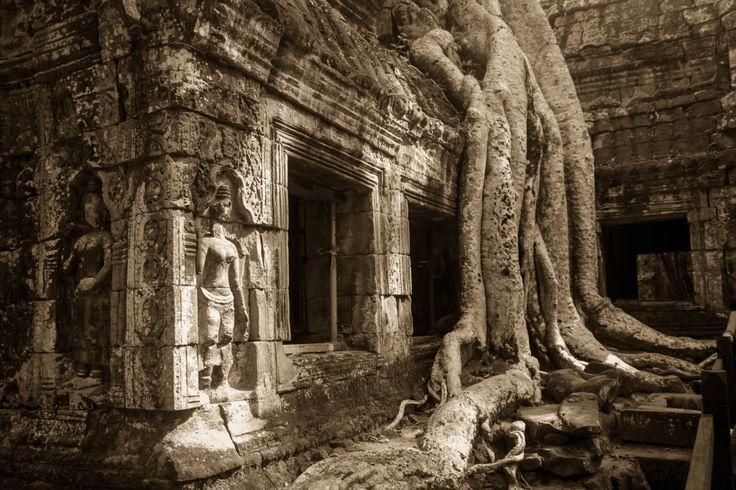 Cambodia-7032