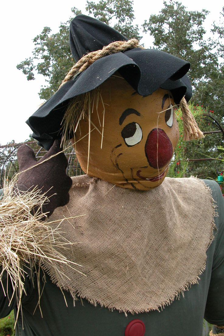 """""""The Scarecrow"""" by the Herb Society Huntsville botanical"""