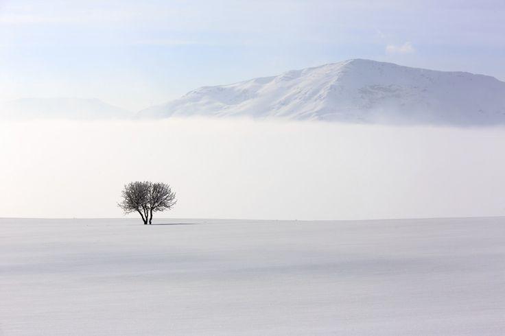 Guida passo passo per diventare un maestro della fotografia minimalista