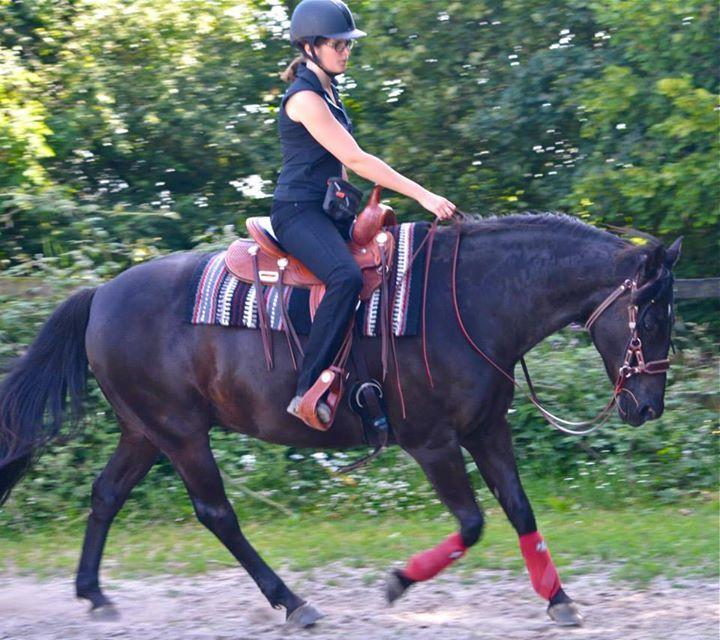 L'équitation Western : simplifier pour commencer