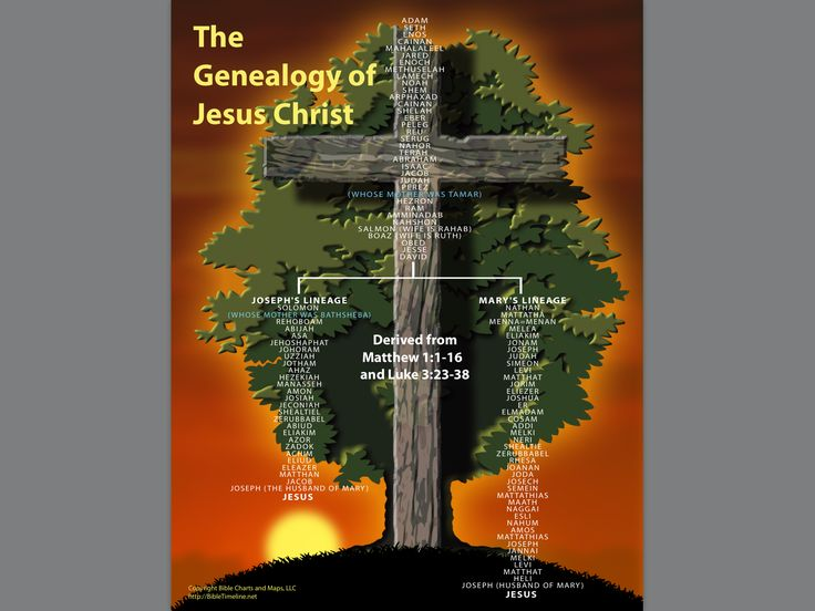 Luxury Jesus Lineage Chart 176 best heritage images on pinterest
