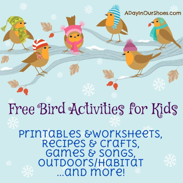 Kids love to watch birds...and they will surprise you at how quickly they learn to identify them. These fun printables and activities will help them learn and appreciate birds.
