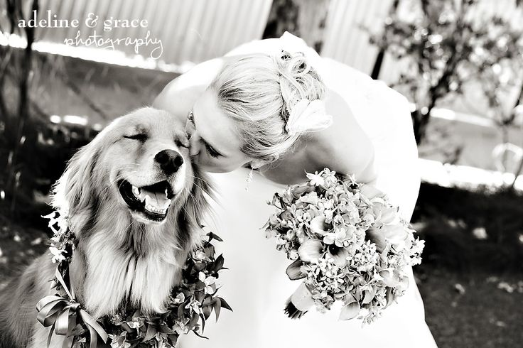 Bride and her dog :). Look at the dogs face. This is precious!....Thats just so beautiful.