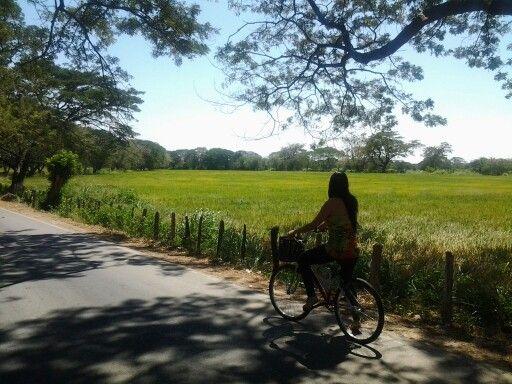 Camino a Guacoche Valledupar Colombia