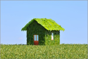 Living in a greener home http://italk.royalsundaram.in/featured/living-in-a-greener-home/