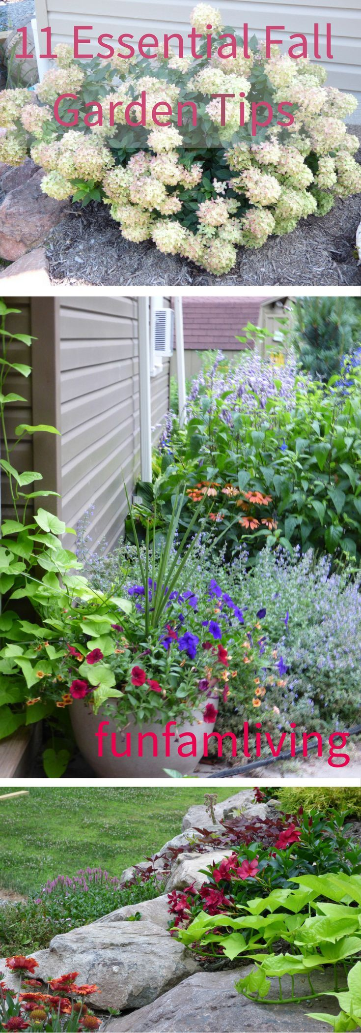 best 25 landscape planner ideas on pinterest flower garden