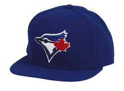 Got this sick hat for Xmas from the bro-in-law.  Go Jays.