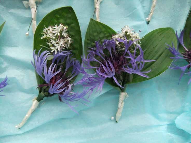 Ushers wedding buttonholes of cottage garden flowers