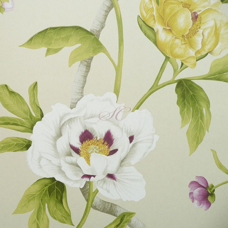 Zoffany Wallpaper   Google Search